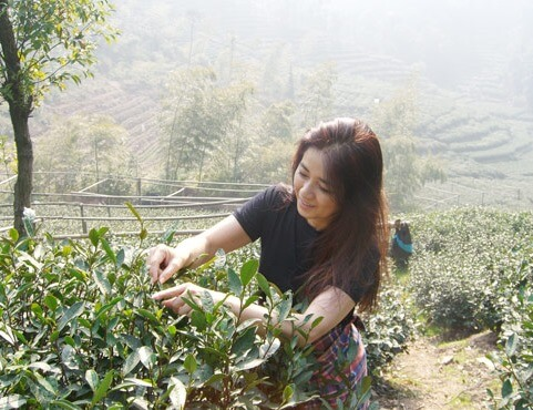 風吹ジュン 中国茶